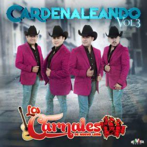 Los Carnales De Nuevo Leon – Amor Añejo